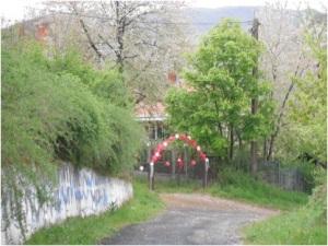 Fiocchi e fiori decorano l'entrata della casa degli sposi [M. Pavlovic, Philolitics]