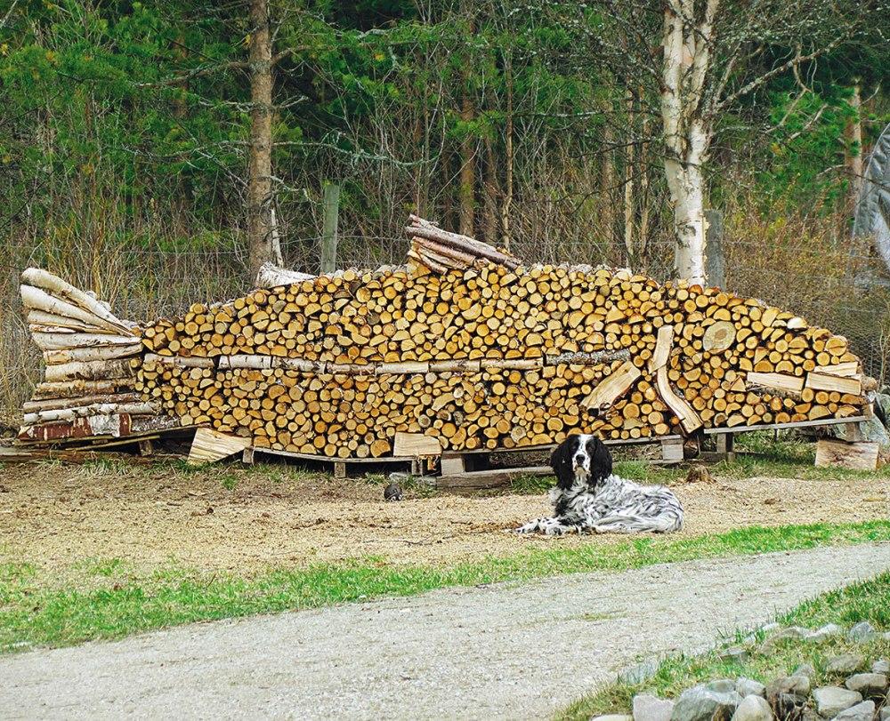 norwegian-wood-catasta-legna